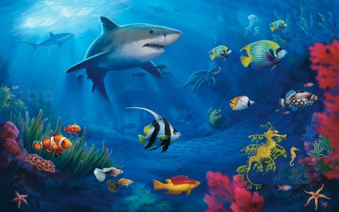 fish wallpaper underwater download