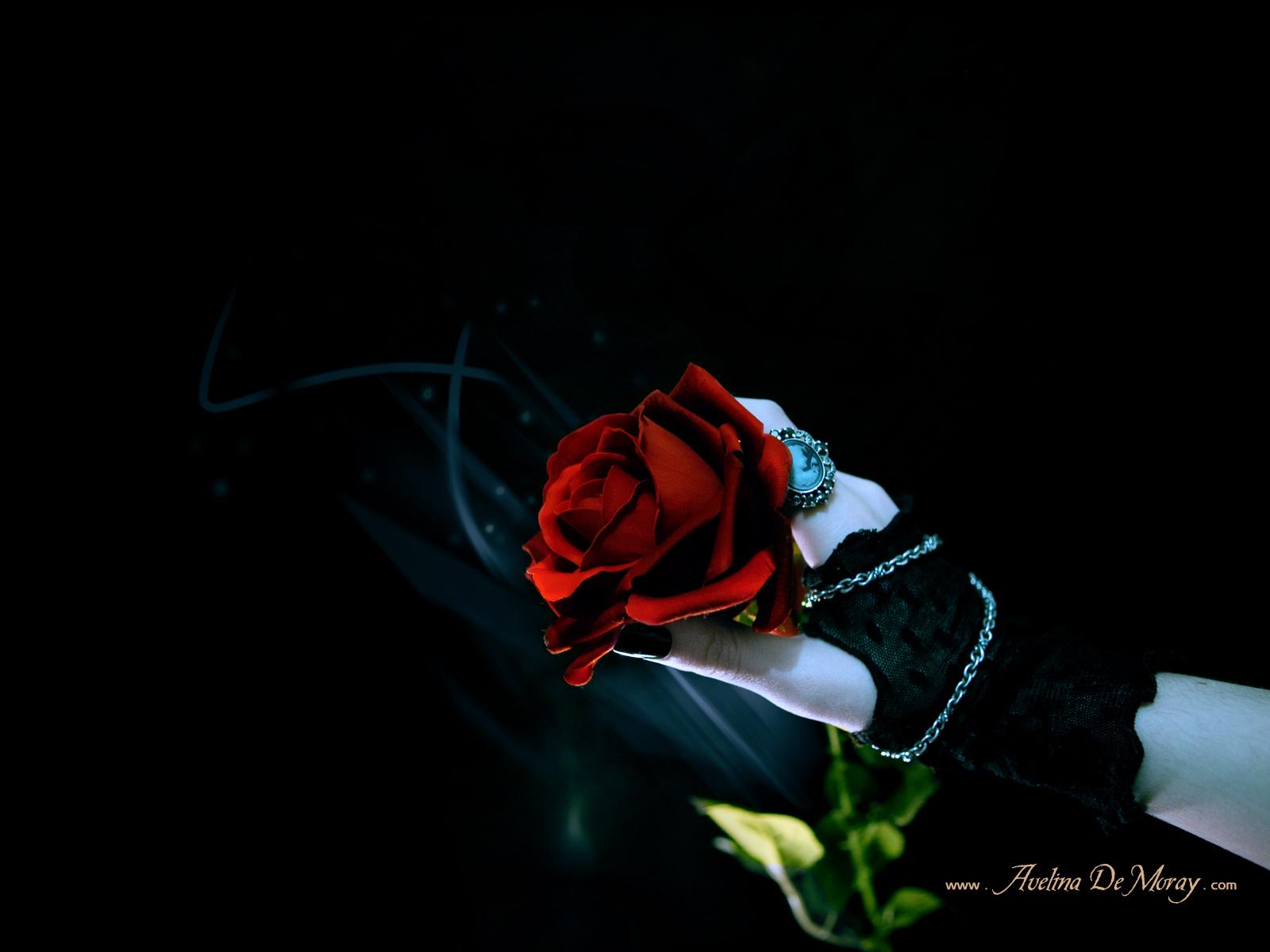 gothic rose wallpaper