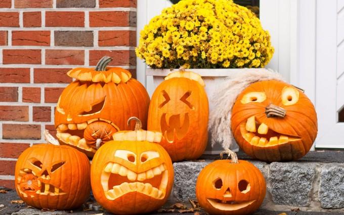 halloween wallpapers fresh pumpkin