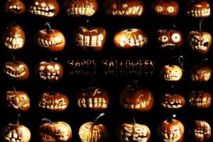 halloween wallpapers funny