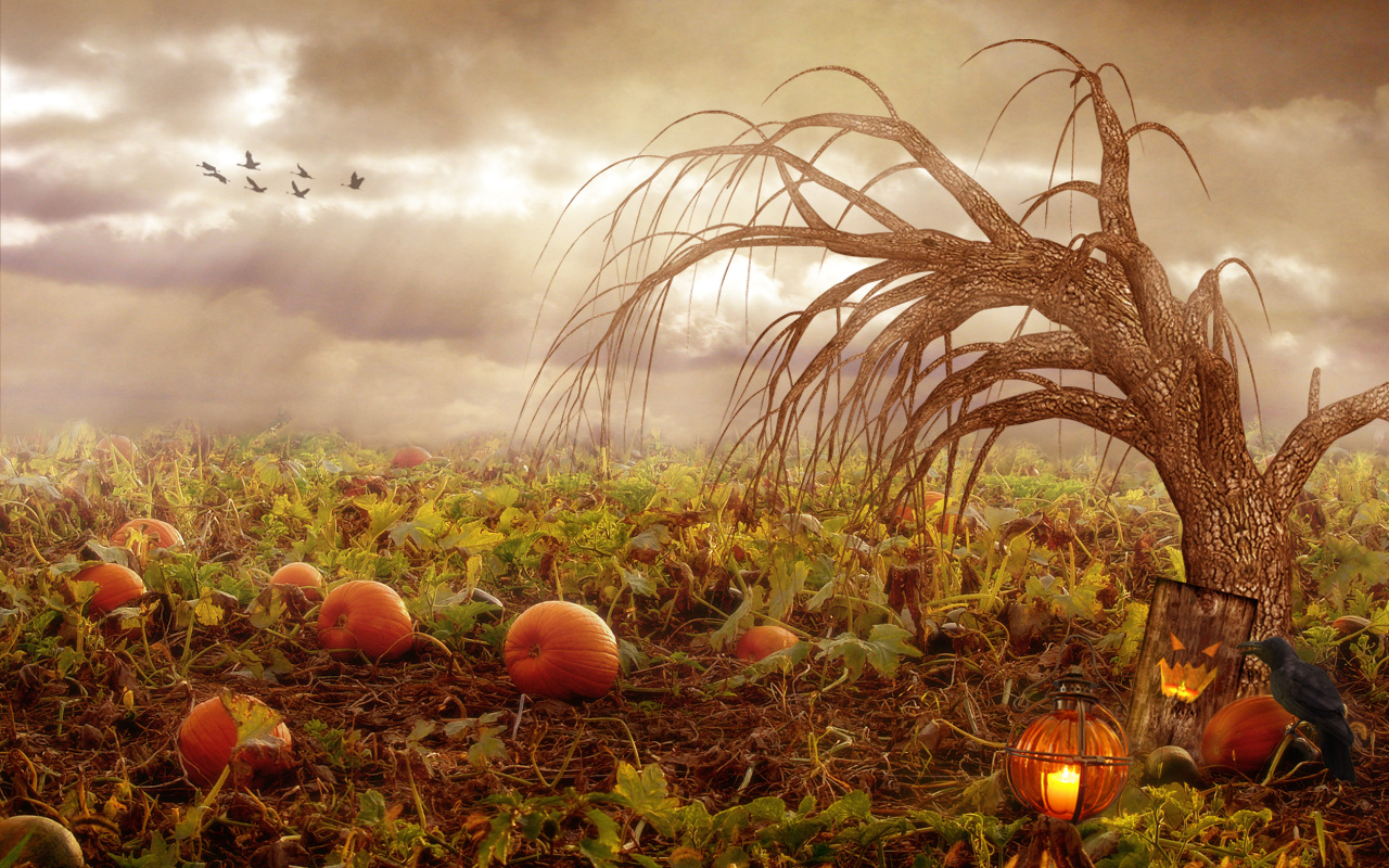 Best Wallpaper Halloween Vintage - halloween-wallpapers-wild  Trends_726725.jpg