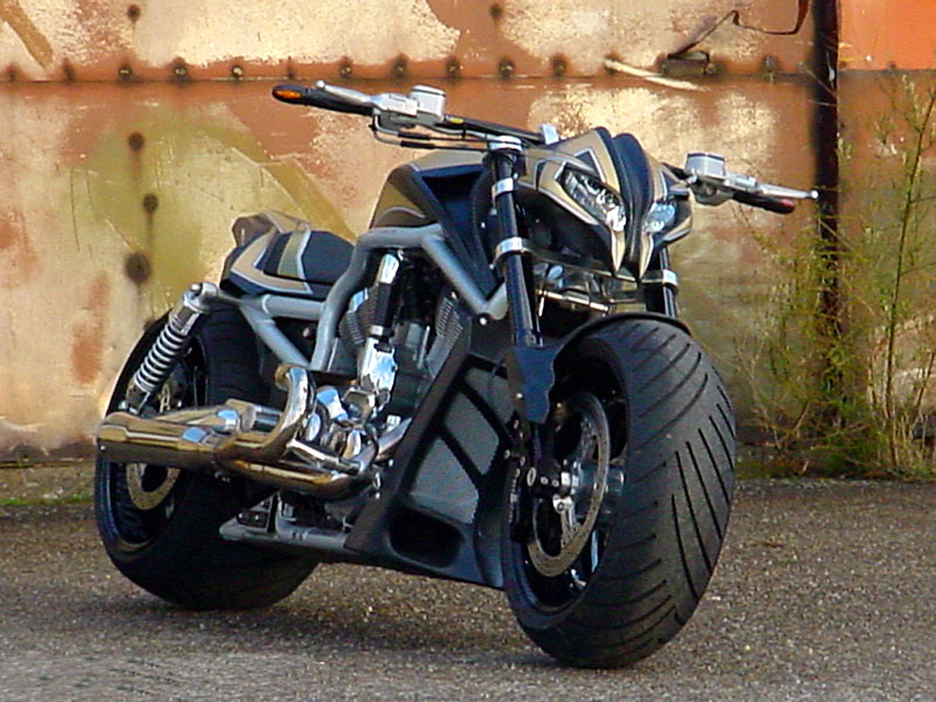 harley davidson photos