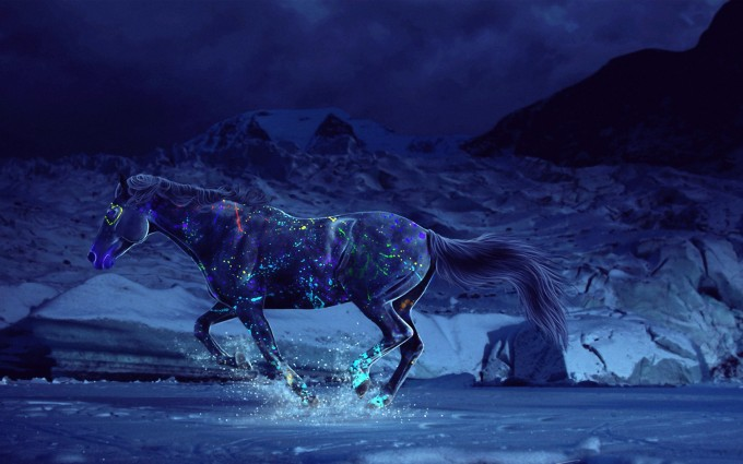 horse wallpapers 1080p