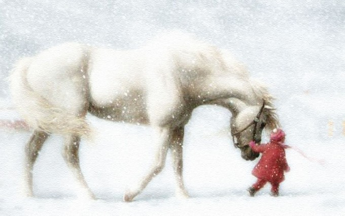 horse wallpapers snow