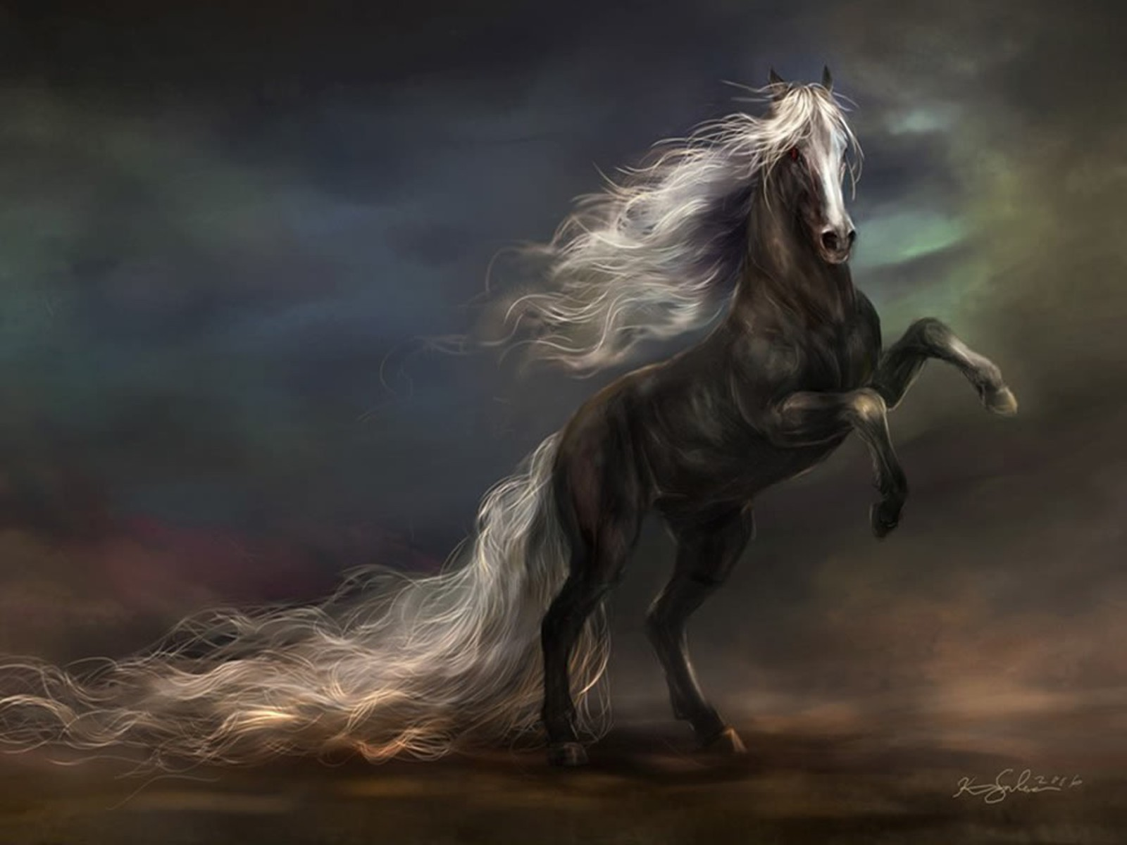 horse wallpapers tablet