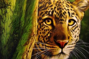 leopard wallpaper magnificent