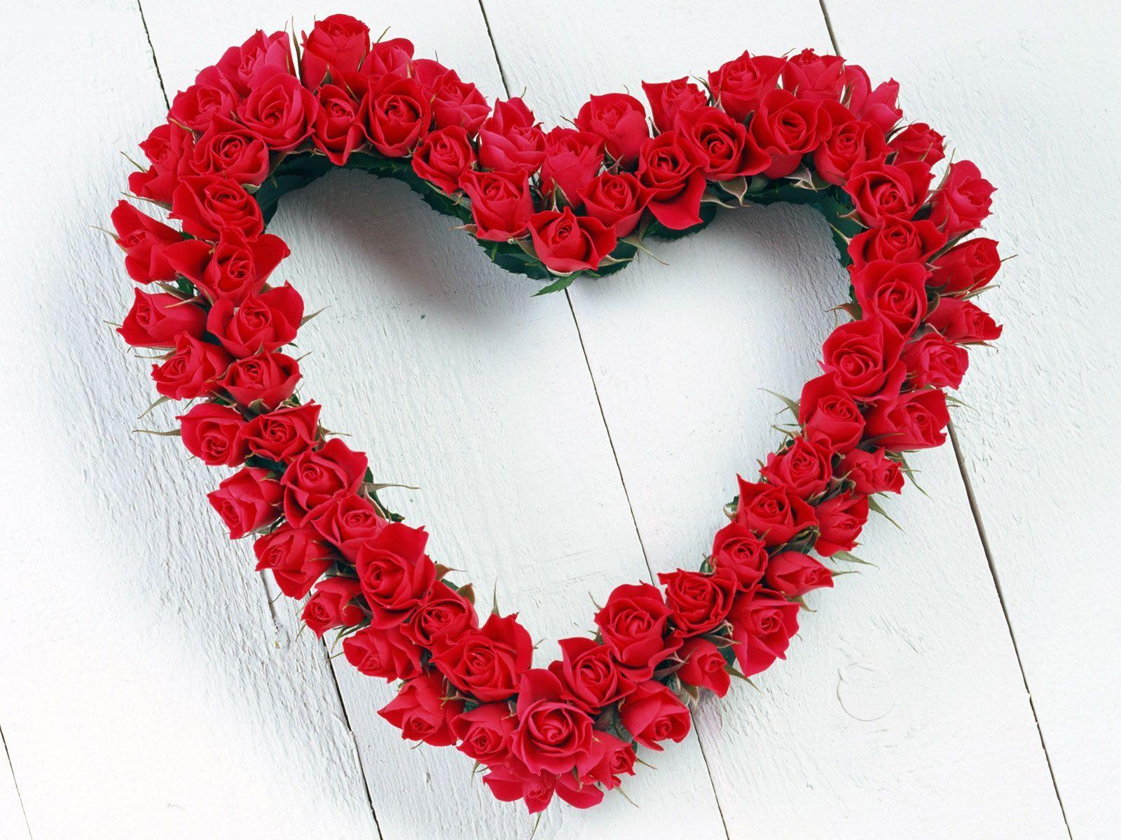 love flowers wallpapers rose
