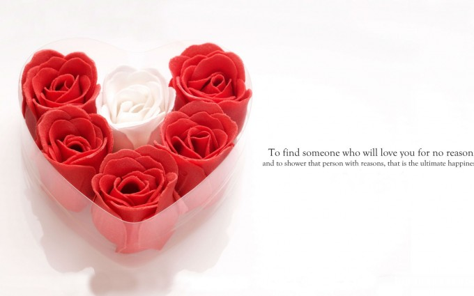 love wallpaper free download quotes