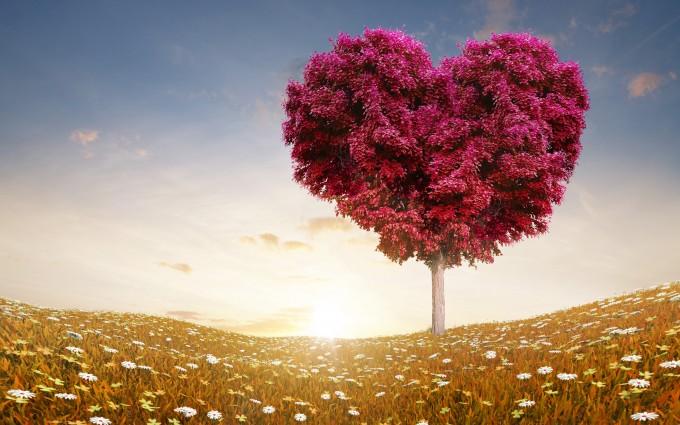 love wallpaper tree flowers