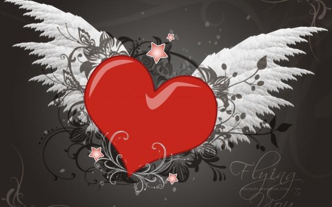 love wallpaper wings