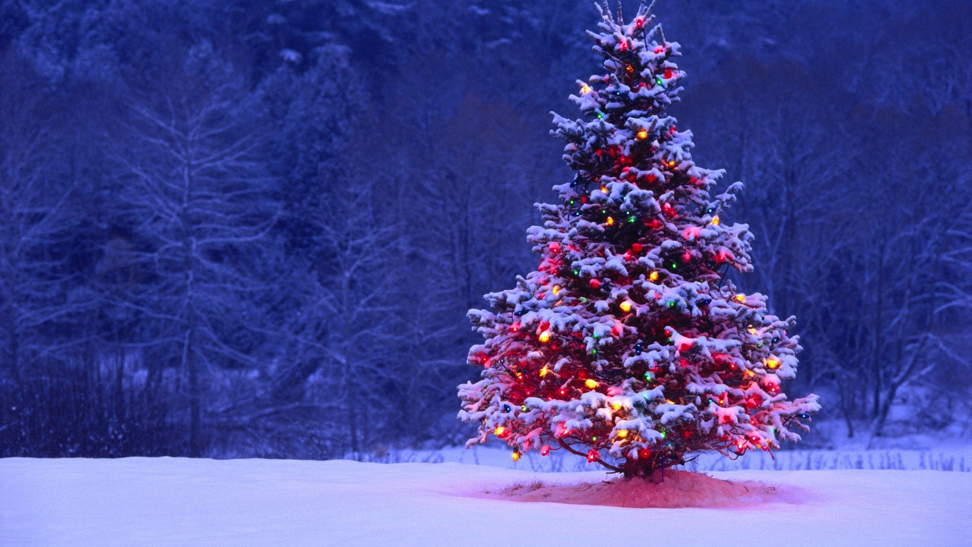 merry christmas wallpapers photo