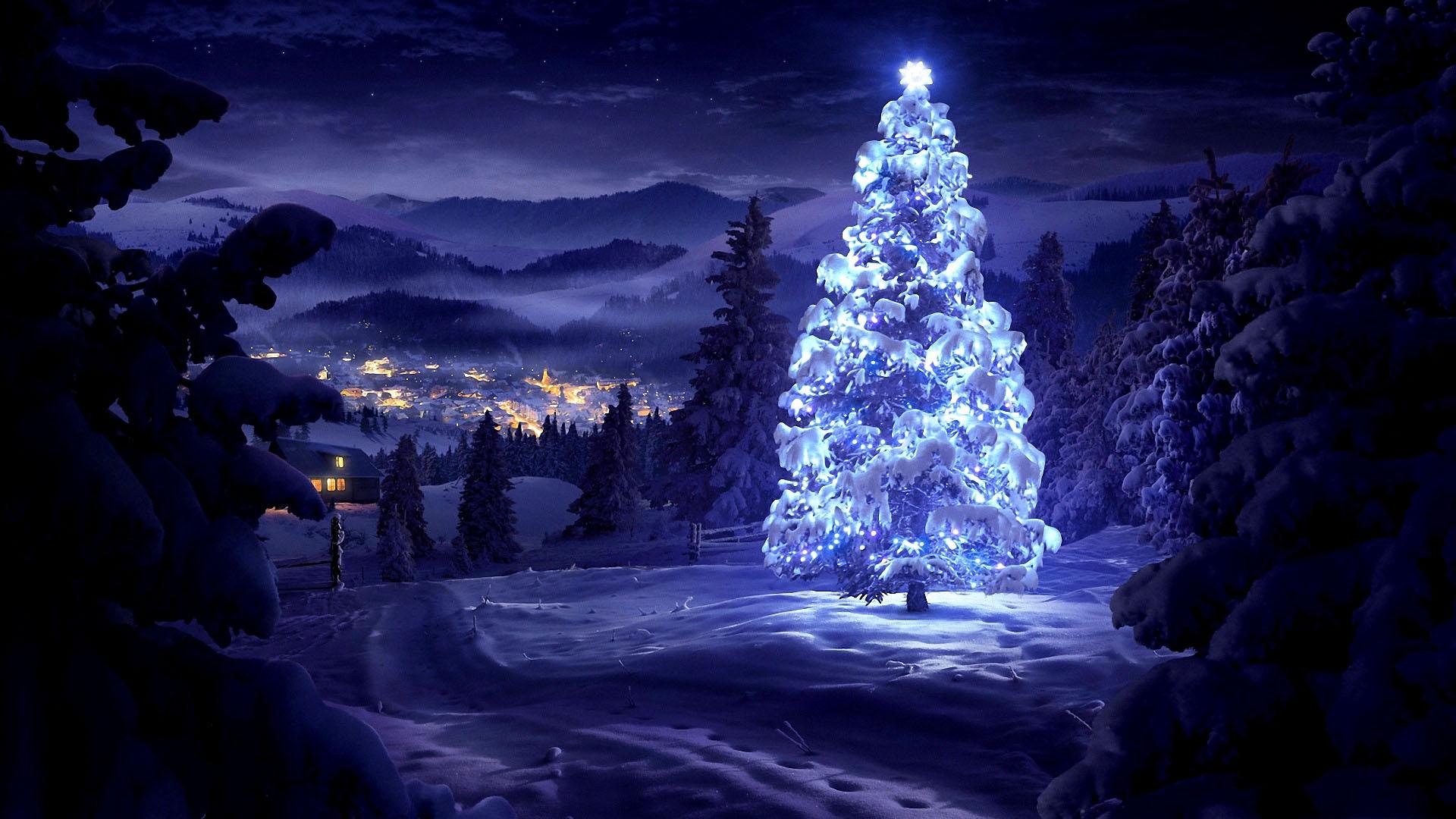 Merry Christmas Tree Wallpaper - HD Desktop Wallpapers | 4k HD