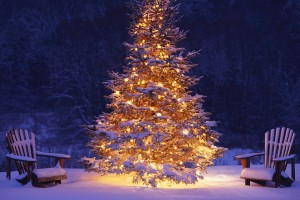 merry christmas wallpapers tree hd A4
