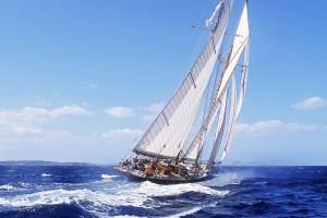 ocean wallpaper cruising