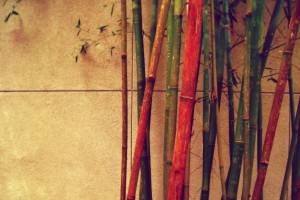 retro wallpaper bamboo