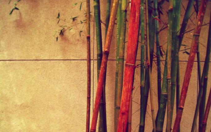 retro wallpaper bamboo