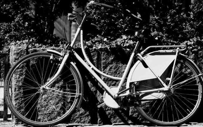 retro wallpaper cycle