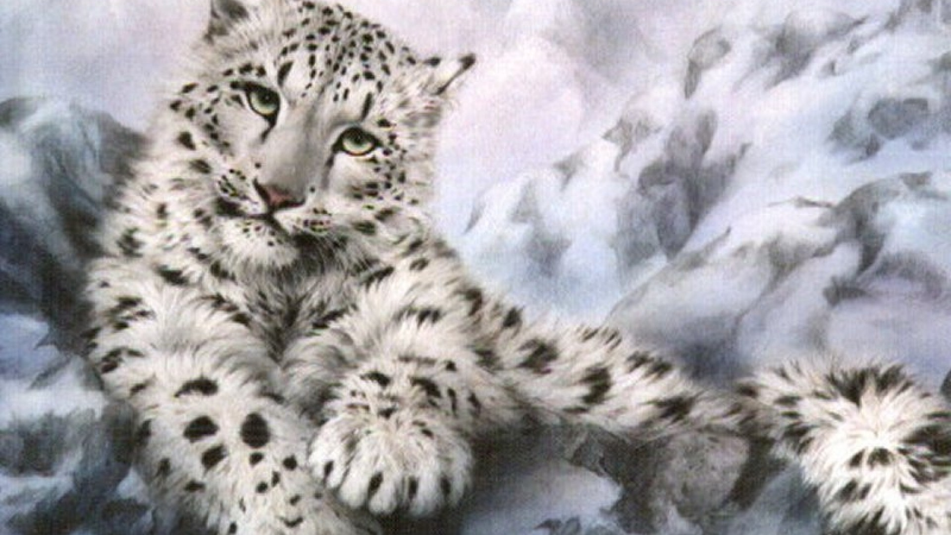 snow leopard wallpaper beautiful