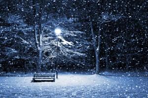 snow wallpaper bench