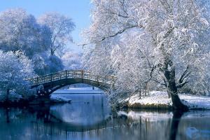 snow wallpaper bridge