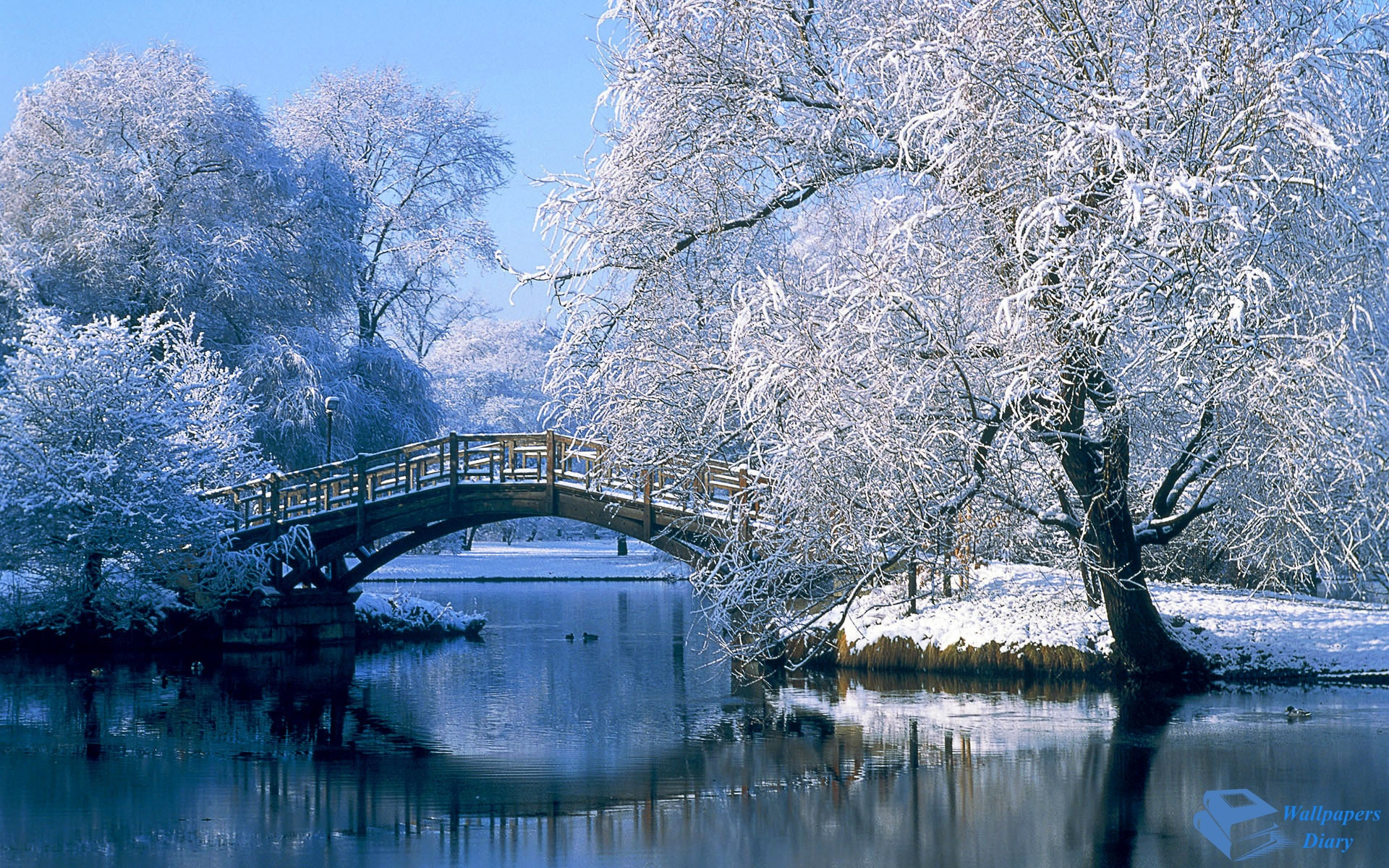snow wallpaper bridge HD Desktop Wallpapers 4k HD