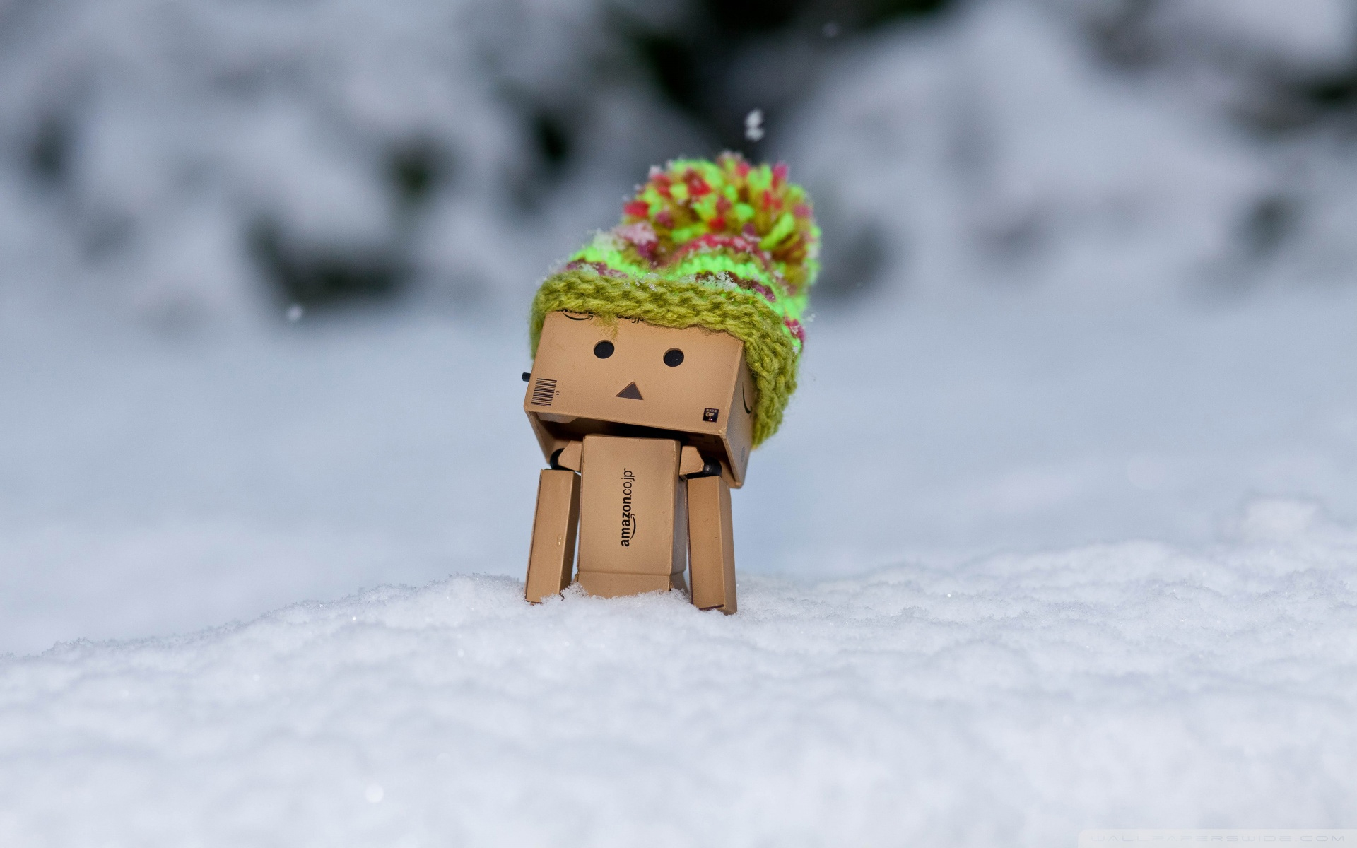 snow wallpaper danbo