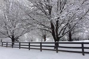 snow wallpaper fence