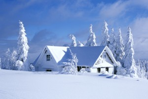 snow wallpaper home