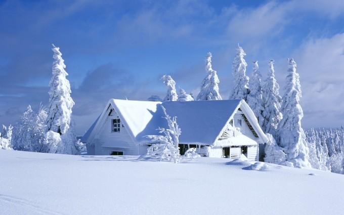 snow wallpaper home