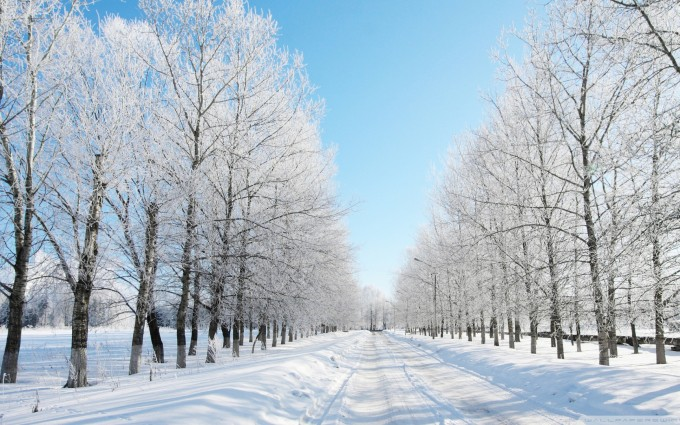 snow wallpaper road