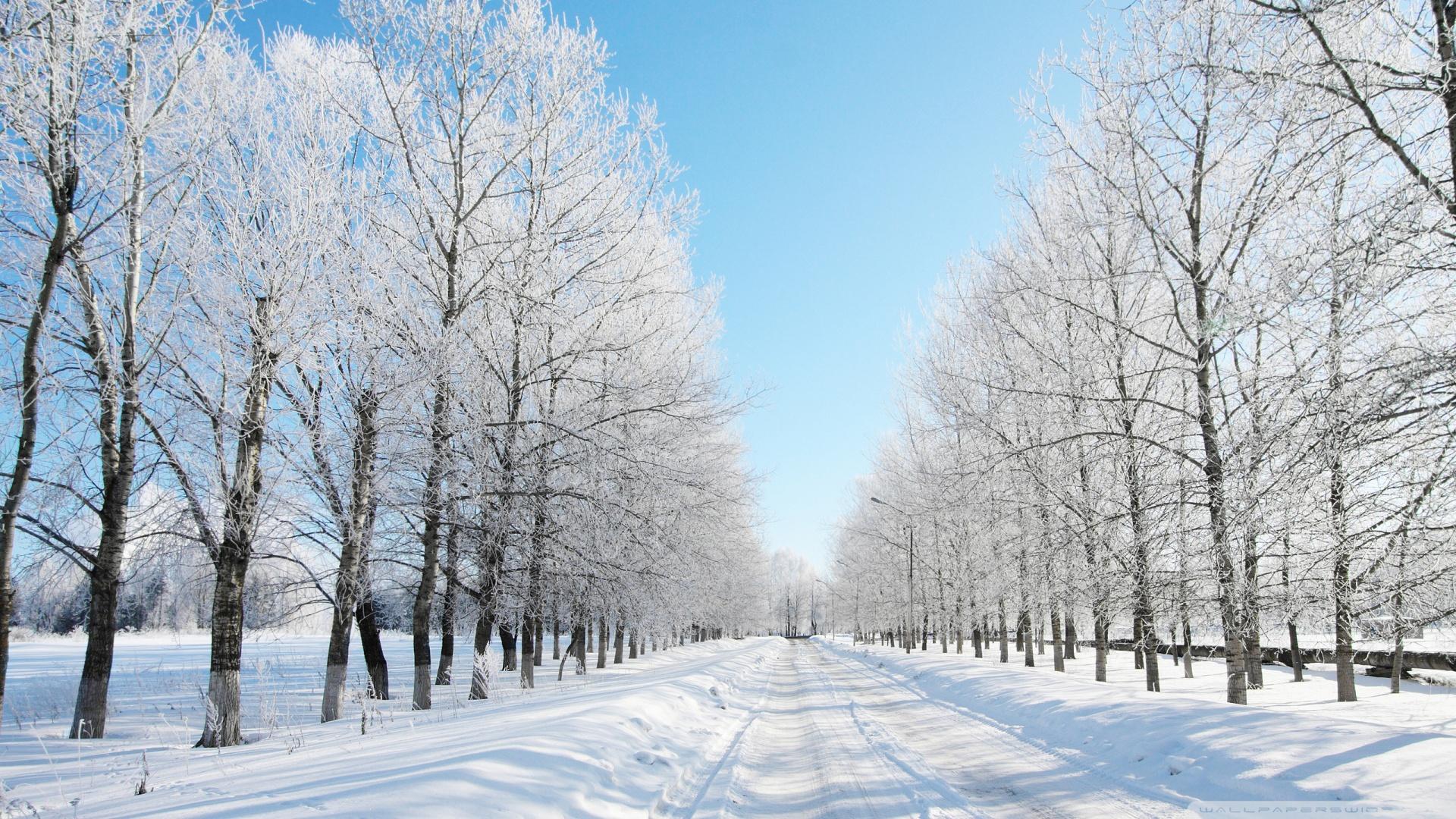 snow wallpaper road