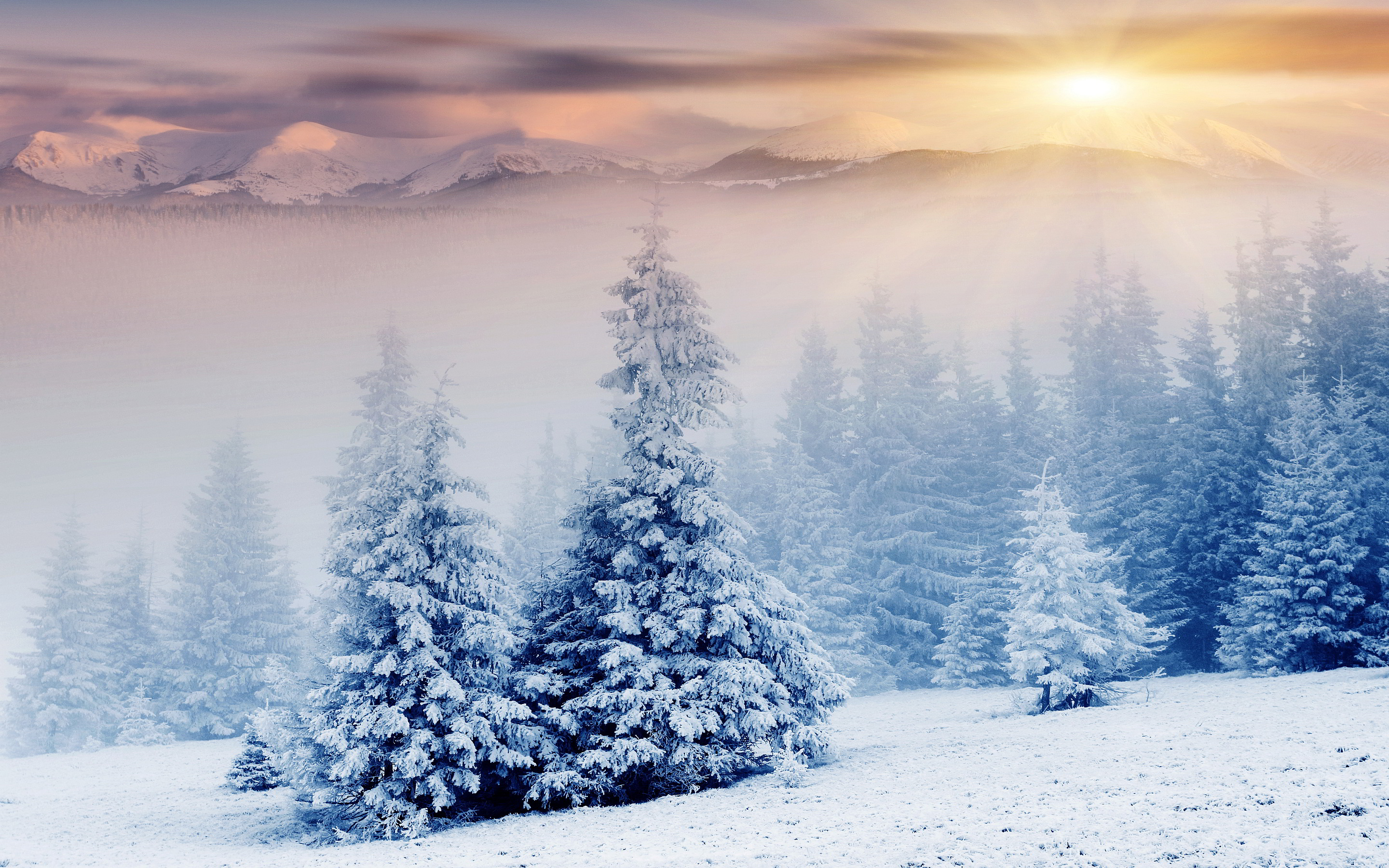 snow wallpaper sunrise