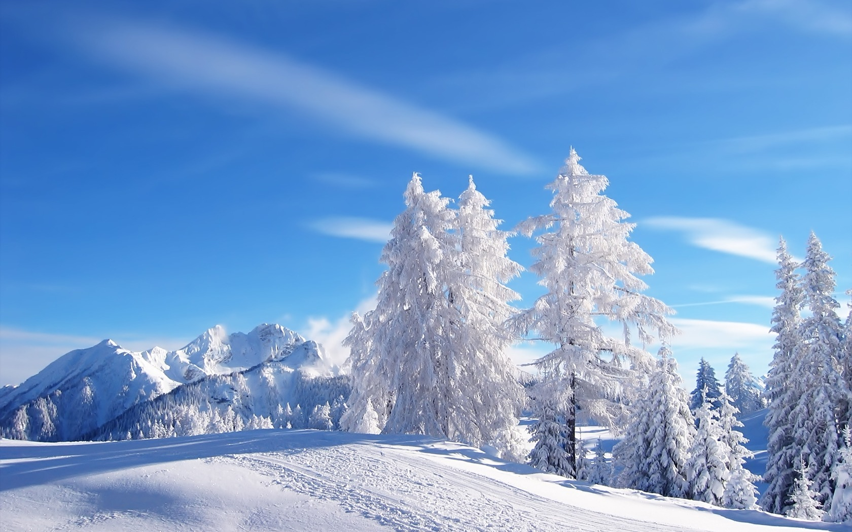 snow wallpaper trees valley
