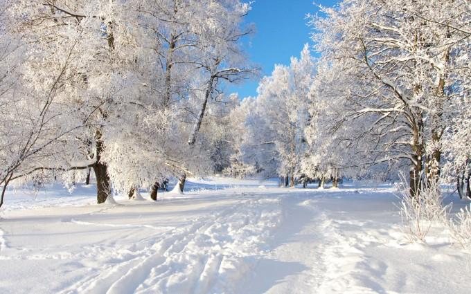 snow wallpaper widescreen