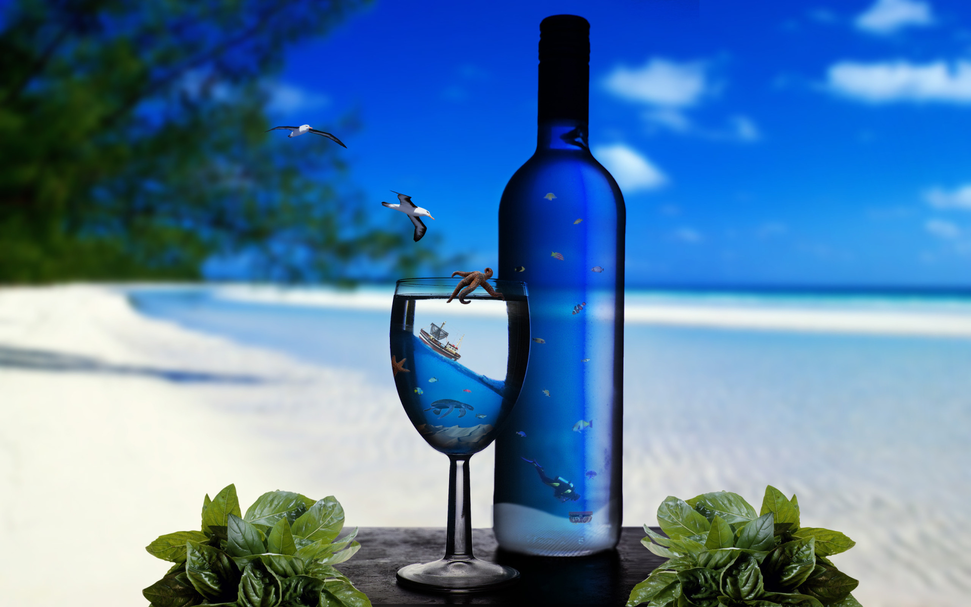 summer wallpapers wine