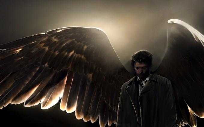 supernatural wallpapers wings