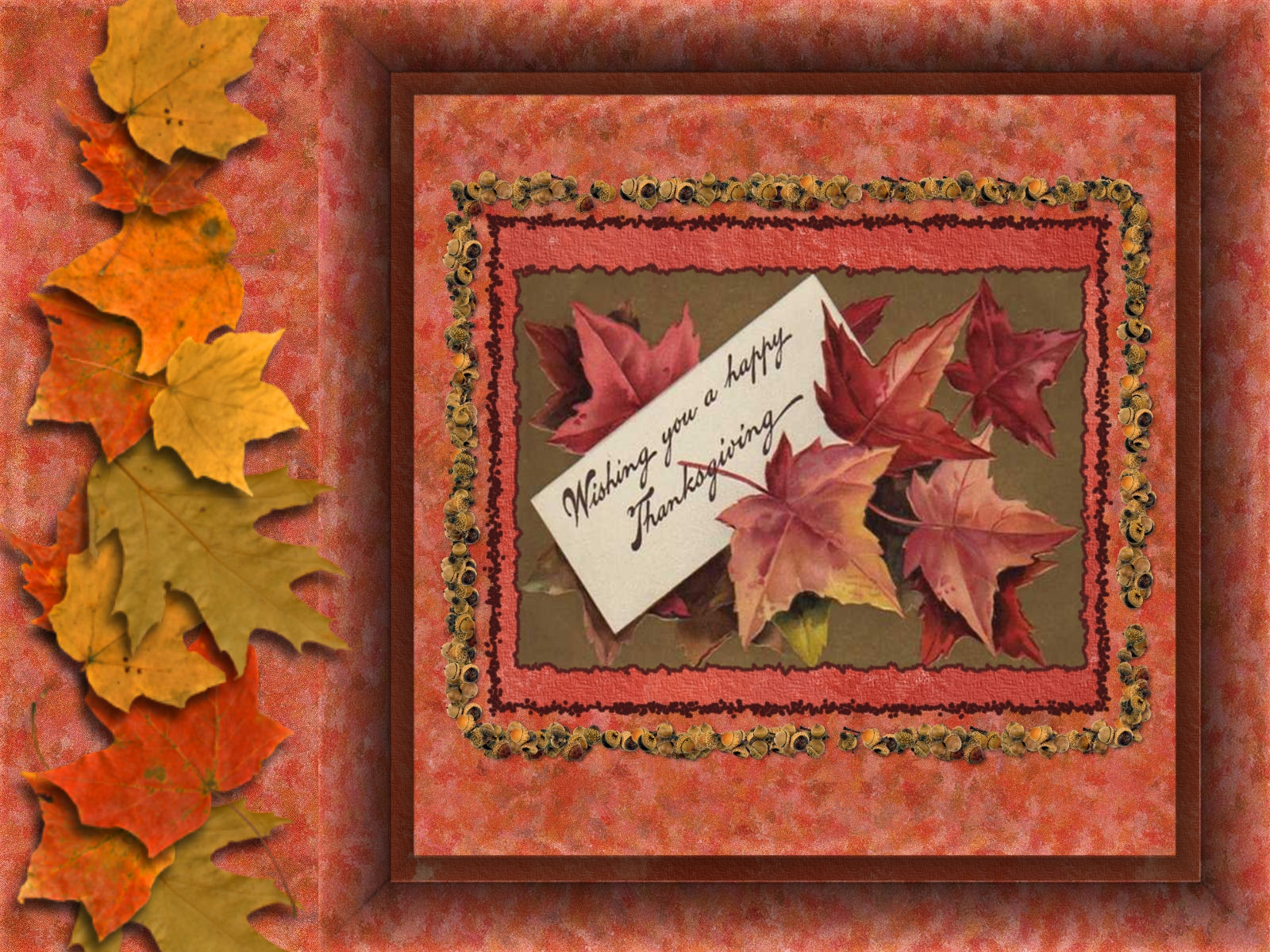 thanksgiving wallpapers plain