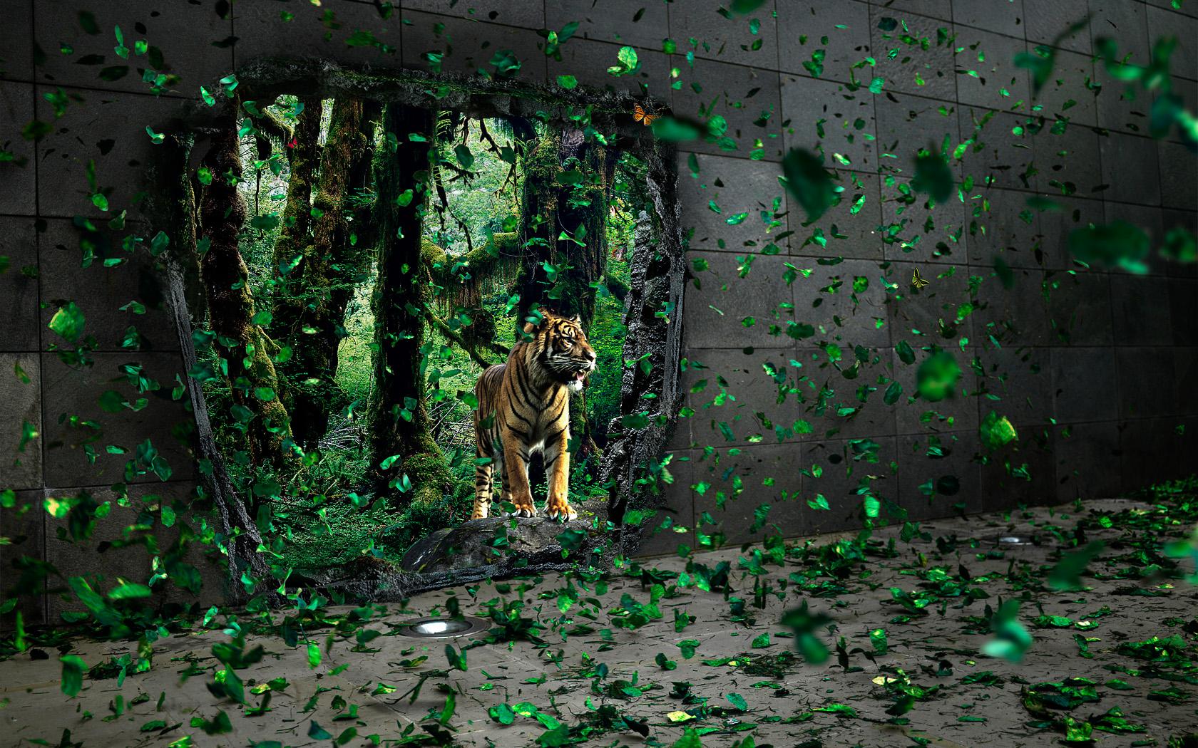 tiger wallpaper 3d graphic