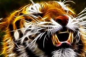tiger wallpaper abstract