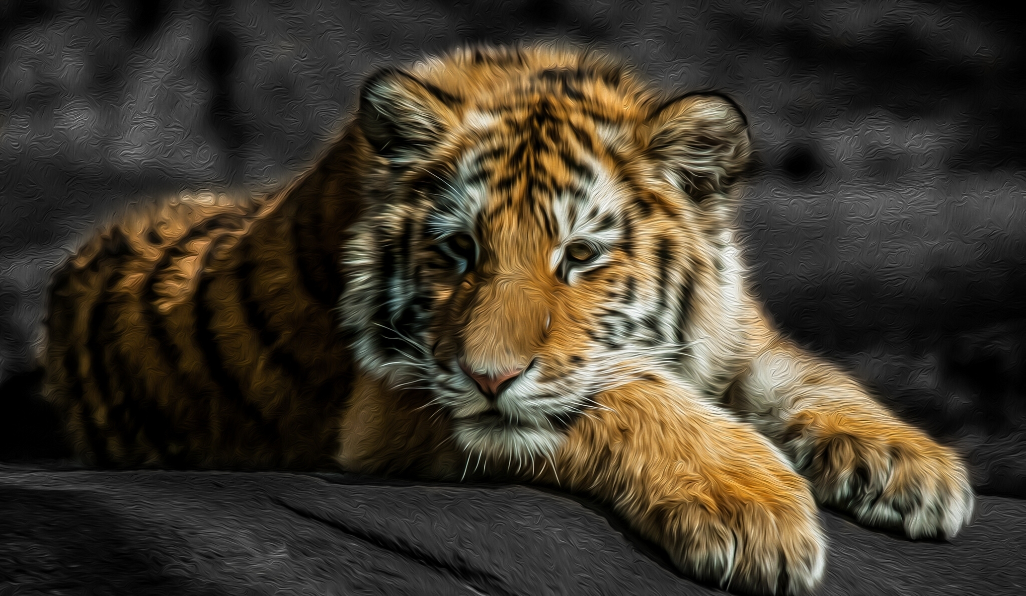 tiger wallpaper abstract HD