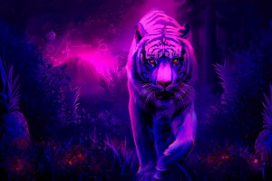 tiger wallpaper purple