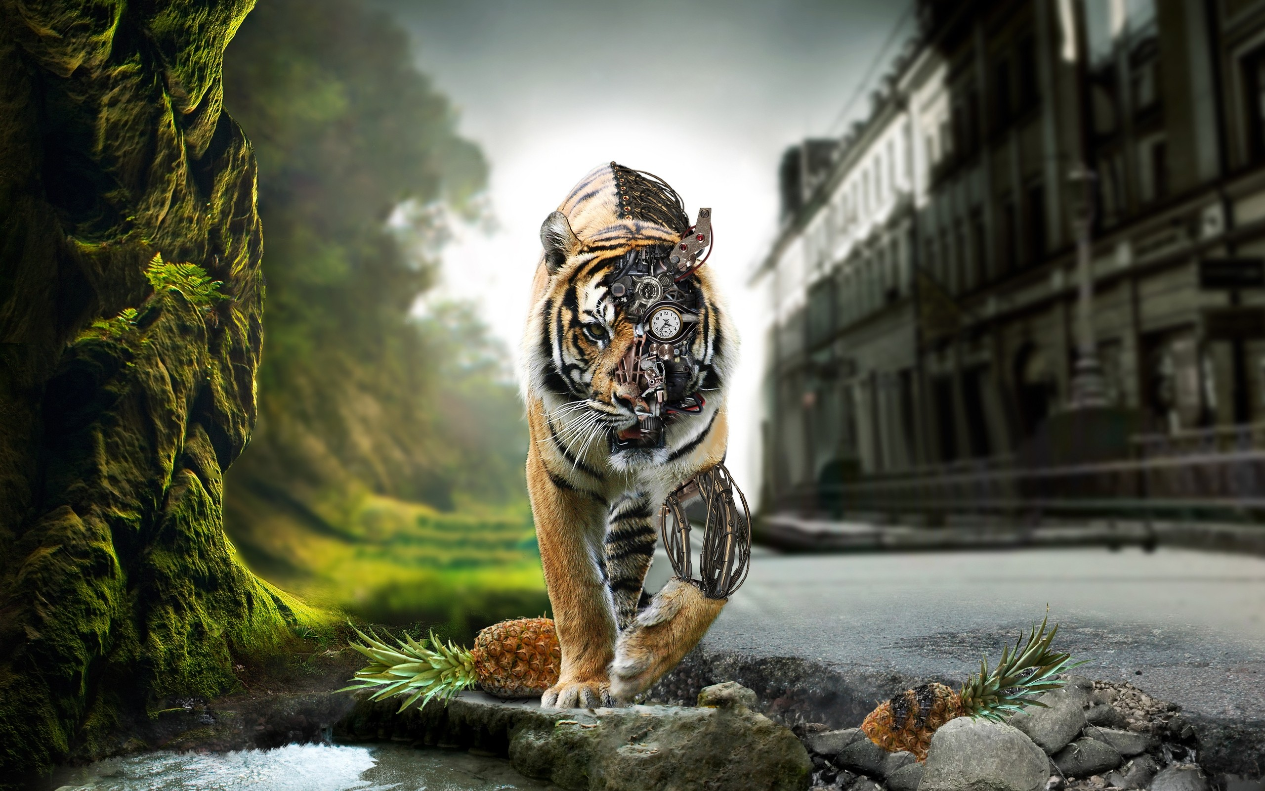 tigers pictures 3d