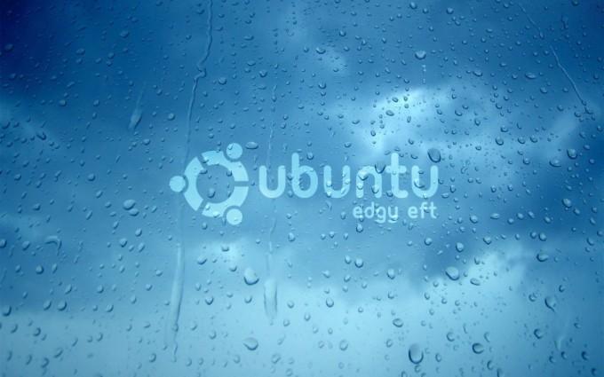 ubuntu wallpaper dew drops