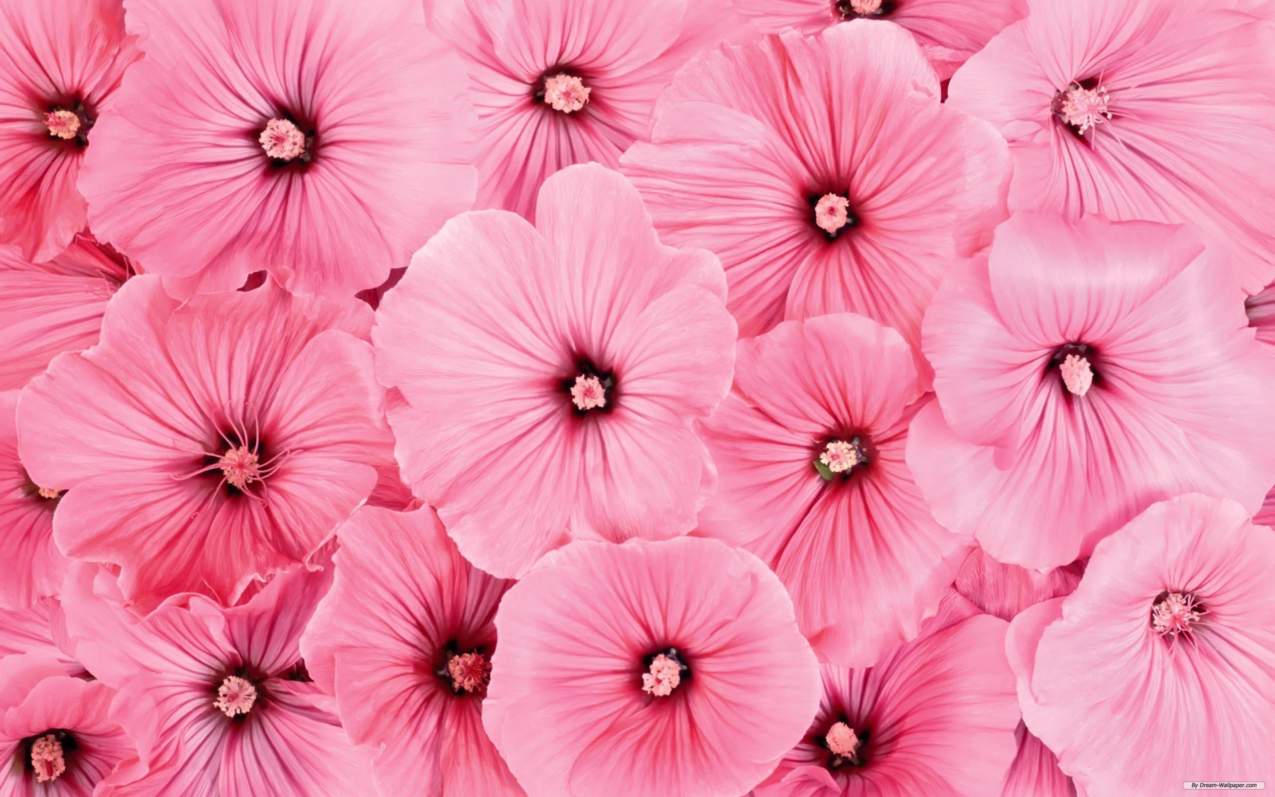 vintage floral wallpaper free