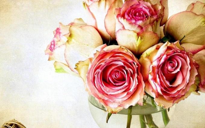 vintage roses wallpaper