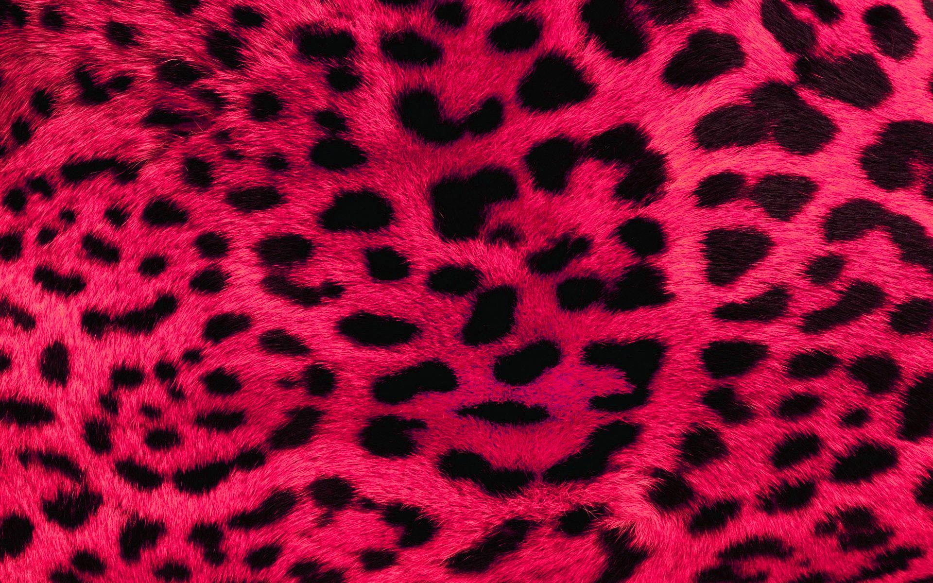 wallpaper leopard pink print