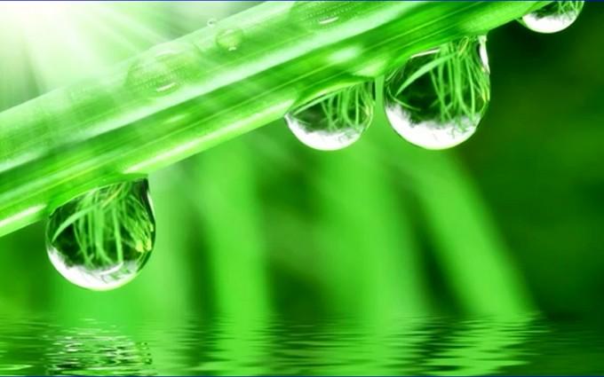 Water Drops Desktop Background