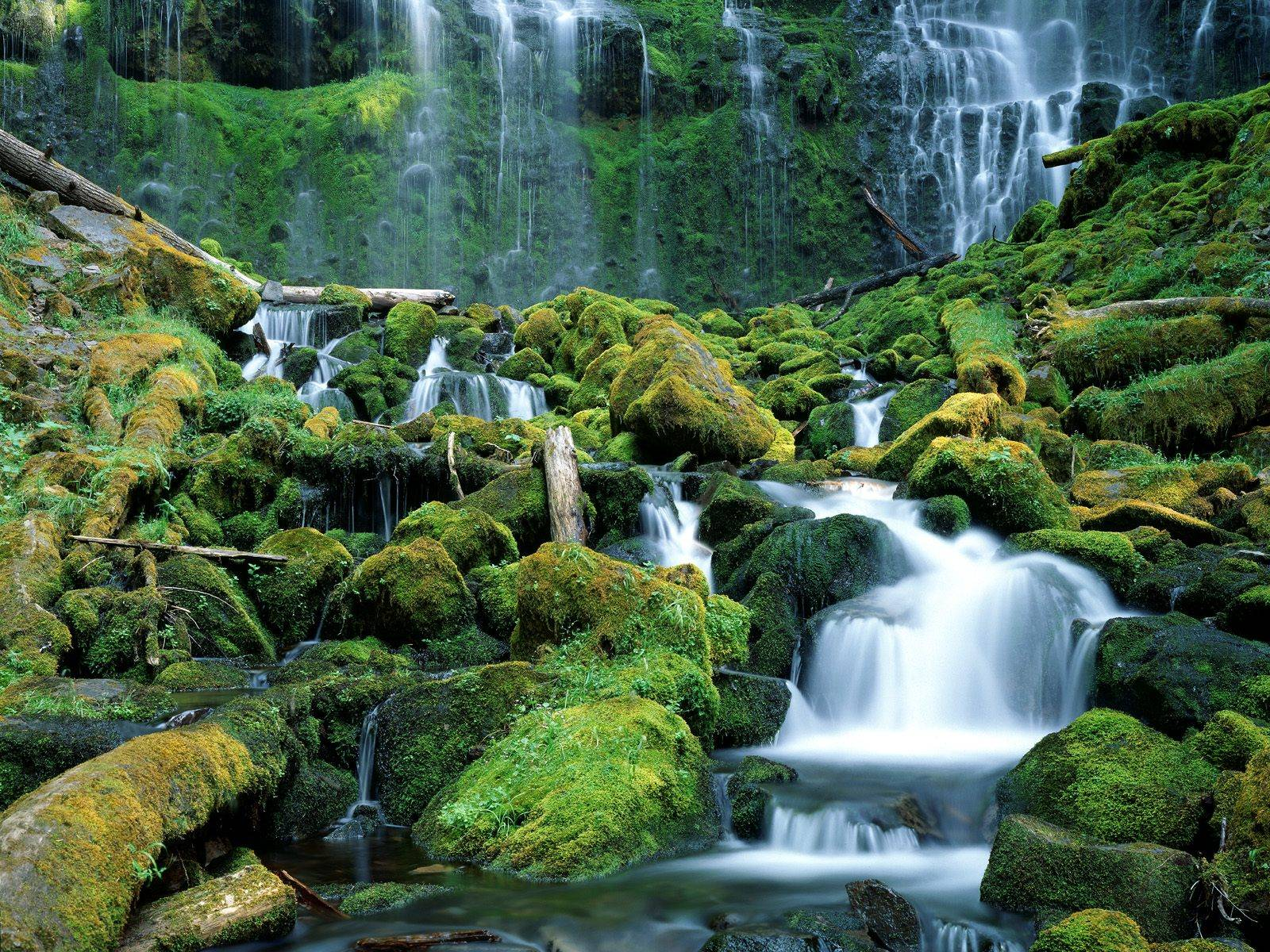 waterfall wallpapers delight