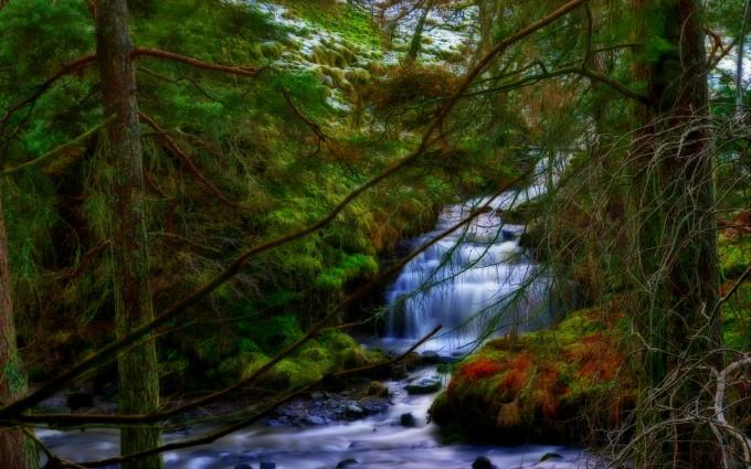 waterfall wallpapers graceful