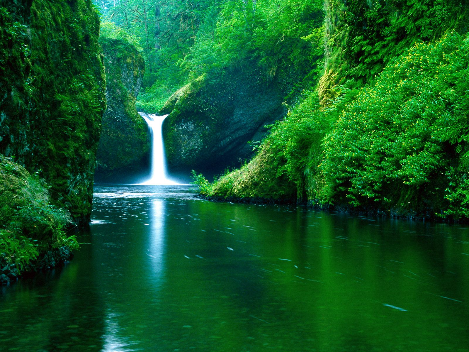 waterfall wallpapers tropical